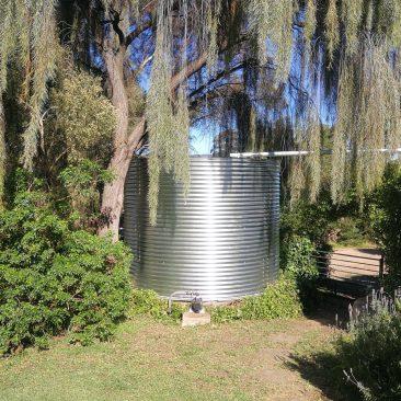 galvanised steel rainwater tanks under willow tree